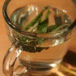 BIO Verveine Tee im Test