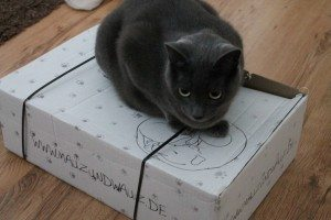 Mauz und Wauz Box (3)