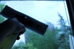 Kärcher Fensterreiniger (12)