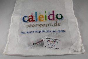 Caleido Concept (4)