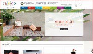 Caleido Concept Startseite