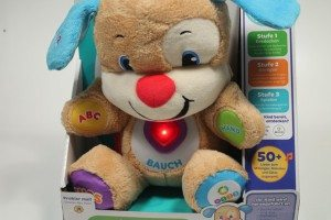 Fisher-Price Experte (59)