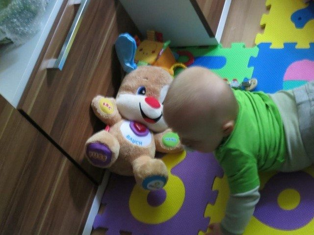 Robin ist Fisher-Price Experte