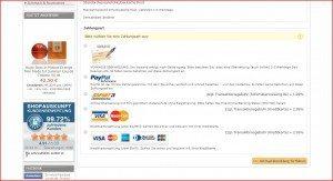 RedZilla Zahlungsarten