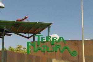 Terra Natura (25)