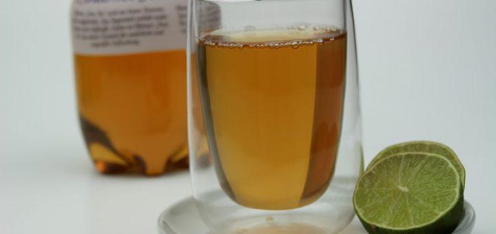 PFANNER PureTea - Neue Sorten im Test