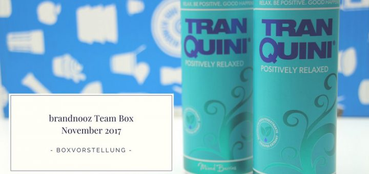 brandnooz Team Box November 2017 vorgestellt