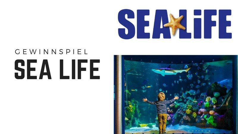 SEA LIFE Gewinnspiel Dezember