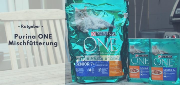 Optimale Mischfütterung mit Purina ONE