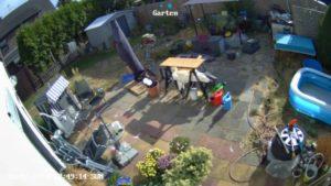 Reolink Argus 2 Sicherheitskamera mit Solarpanel im Test