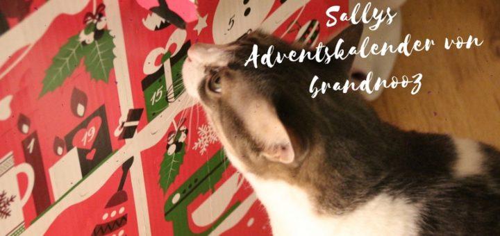 Sallys Adventskalender von brandnooz vorgestellt
