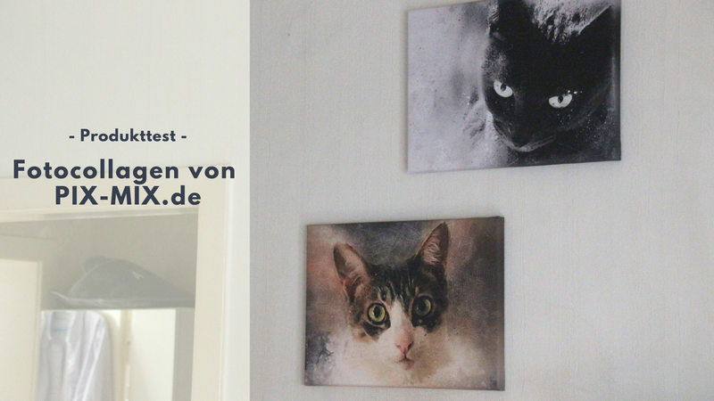PIX-MIX.de - Tolle (Tier-) Fotocollagen auf Leinwand & Co.