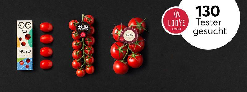 130 Tester für Tomaten-Vielfalt von Looye Kwekers gesucht