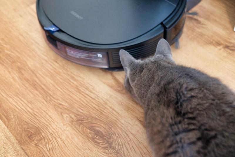 DEEBOT OZMO T8 AIVI mit Katze