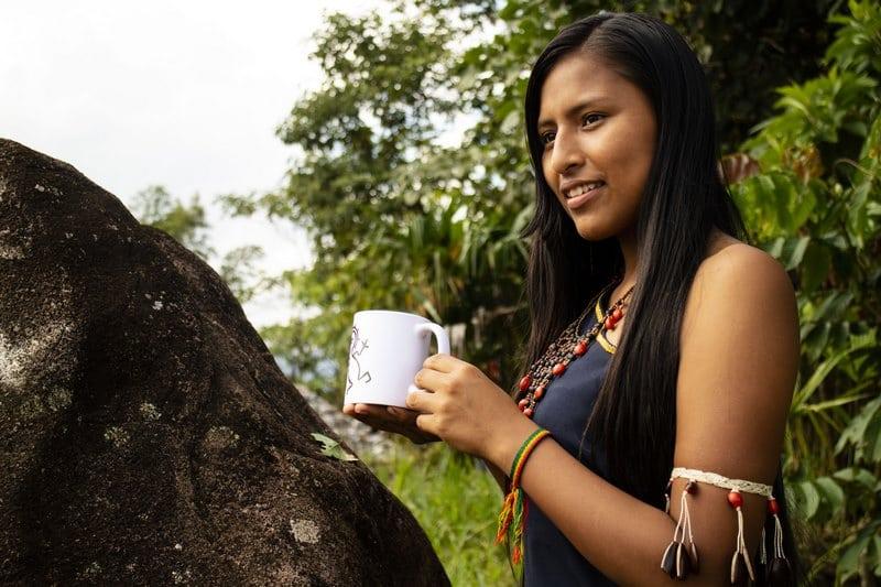 Matchachin Guayusa Tee - Der BIO-Energy-Kick aus Ecuador